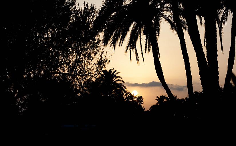 Поездка в Тунис. Первые впечатления.
