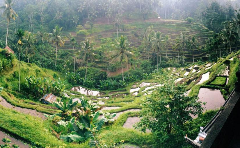 Бали для бюджетного туриста. Наш опыт.