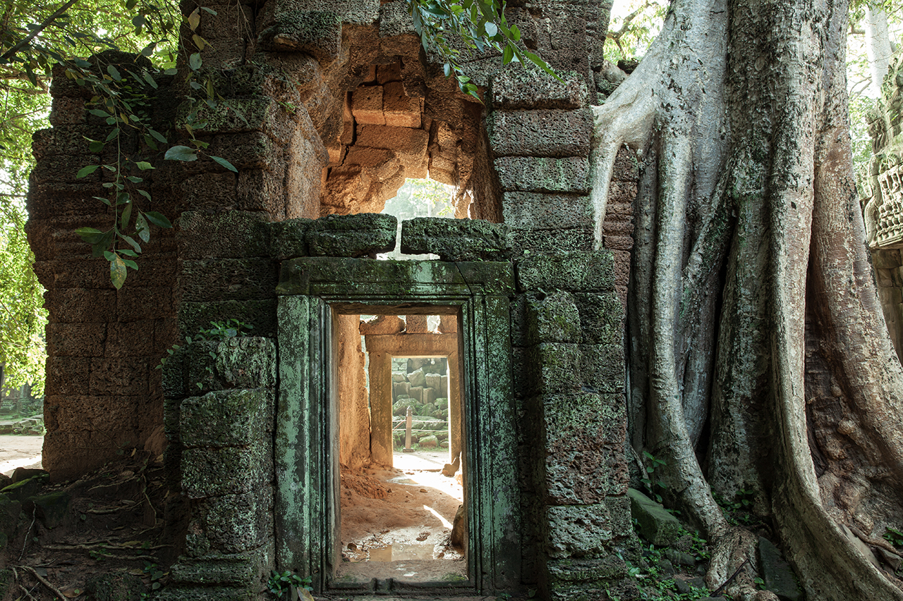 Путешествие по Камбодже: Та Прум