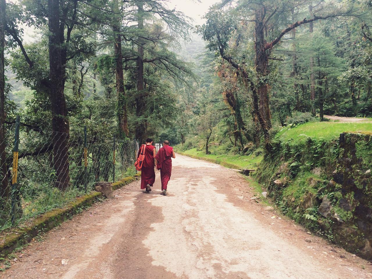 Путешествие по Индии: Монахи на лесной дороге