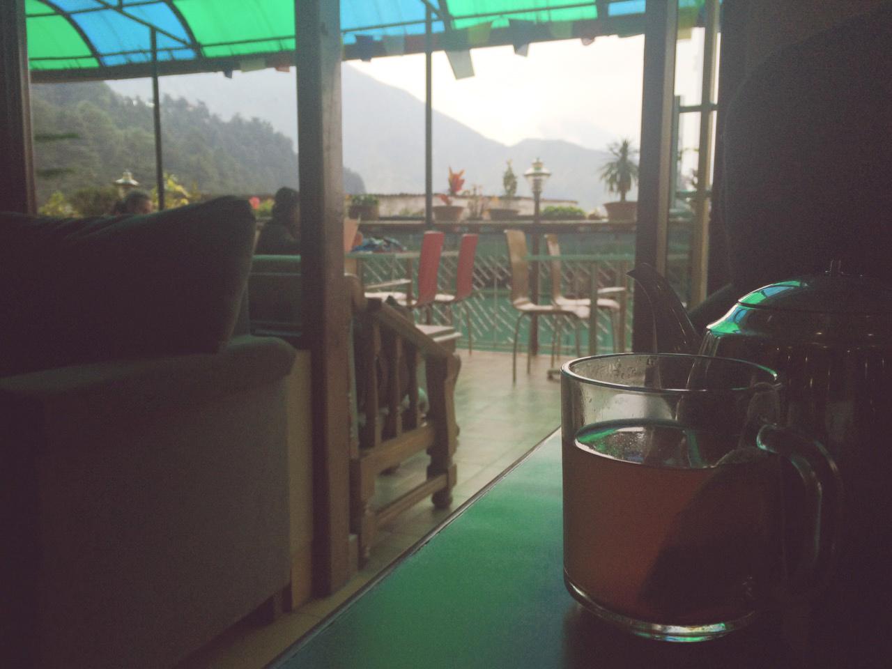Путешествие по Индии: Имбирный чай с лимоном, медом и видом на Гималаи