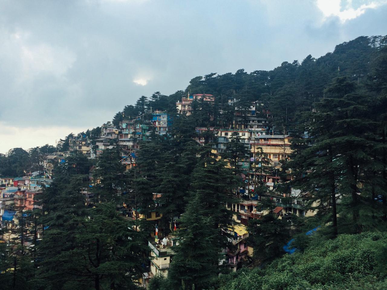 Путешествие по Индии: Вид на Маклеод-Гандж