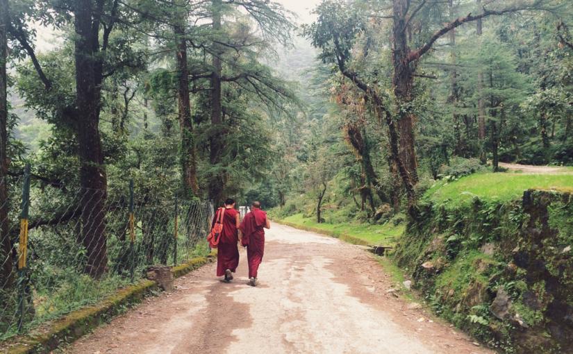Путешествие по Индии. Часть 3: Ришикеш — Дхарамсала.