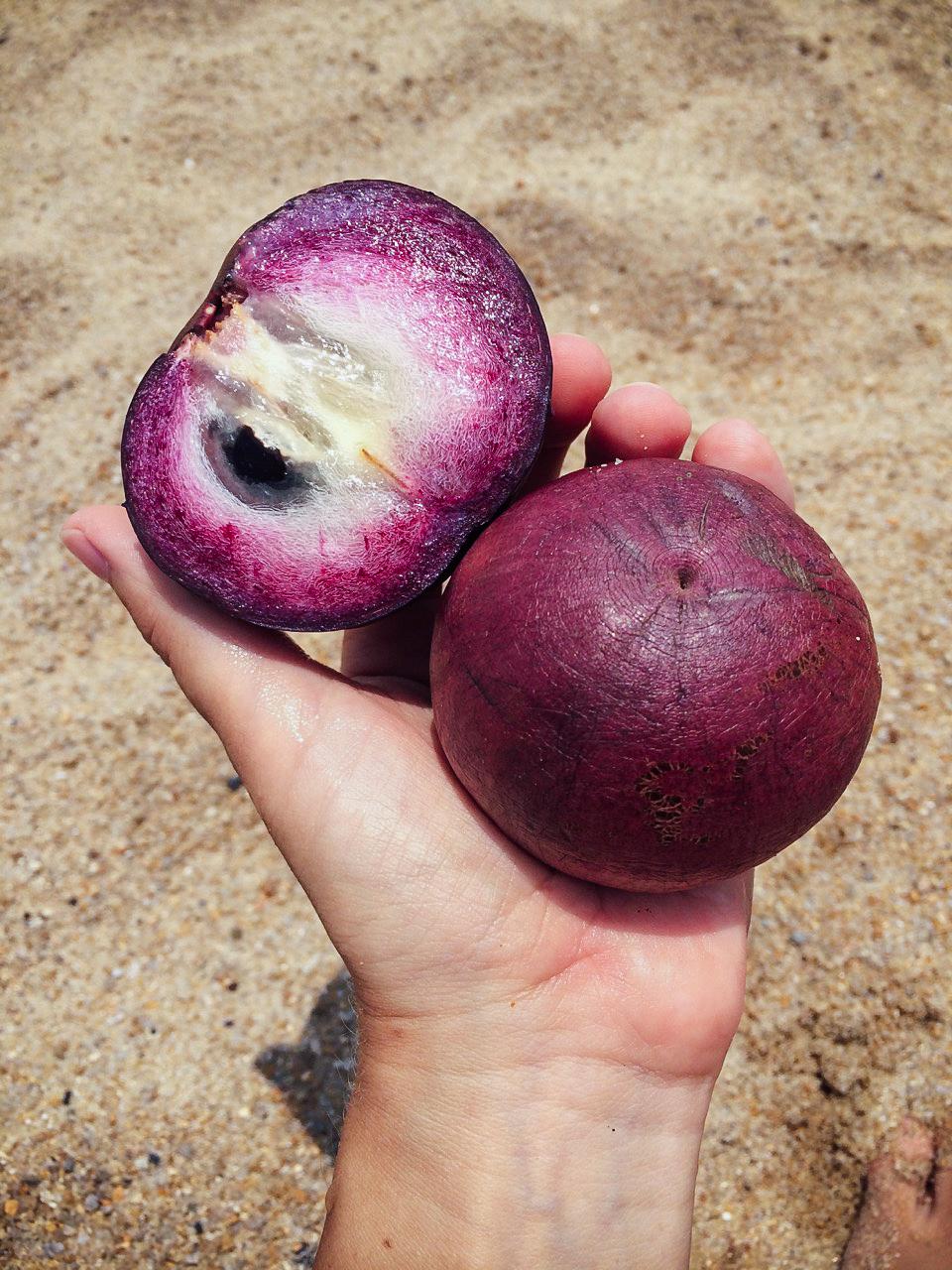 Пробуем фрукты Вьетнама: Звёздчатое яблоко