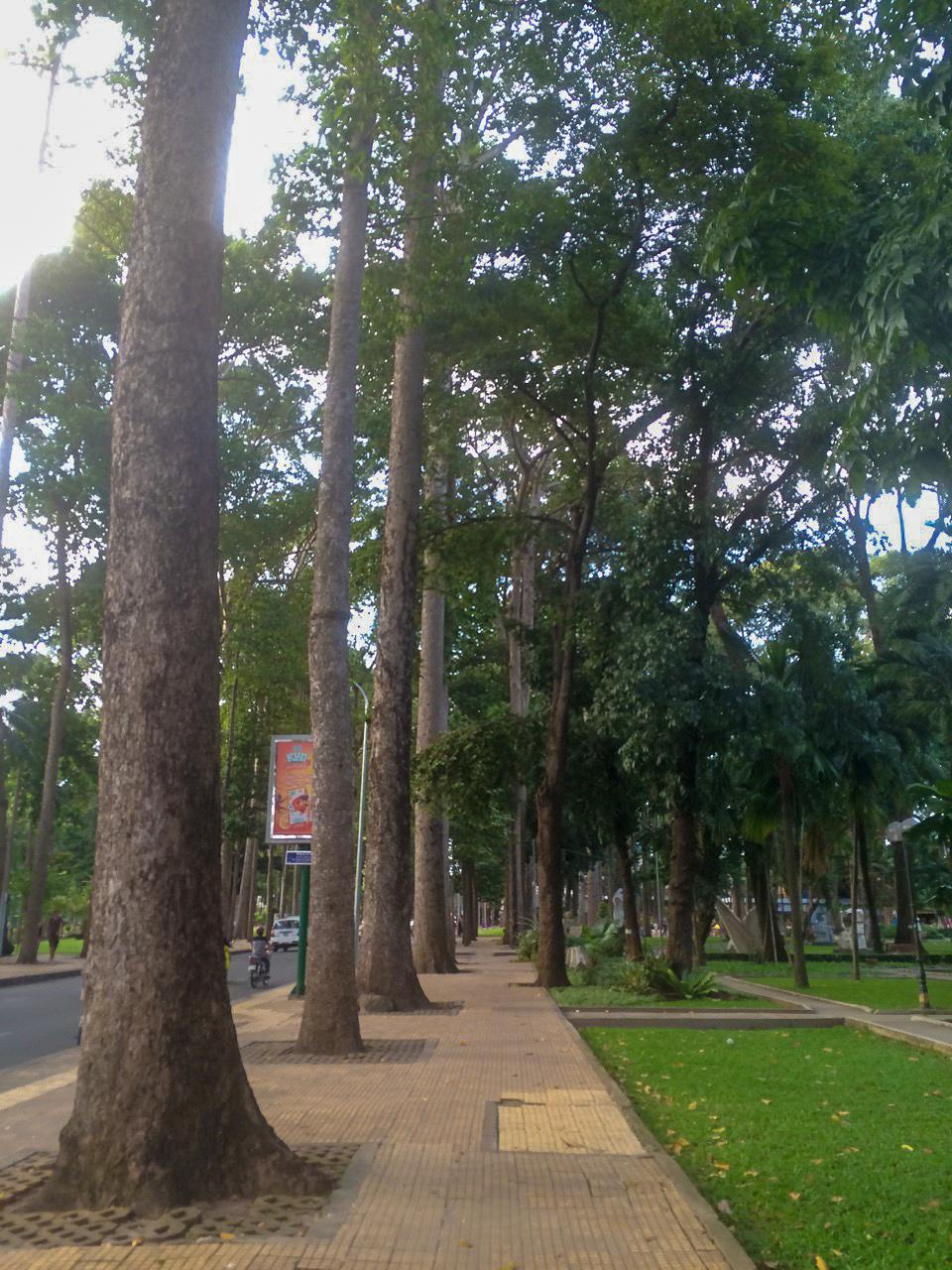 Достопримечательности Хошимина, Вьетнам: Парк Тао Дан