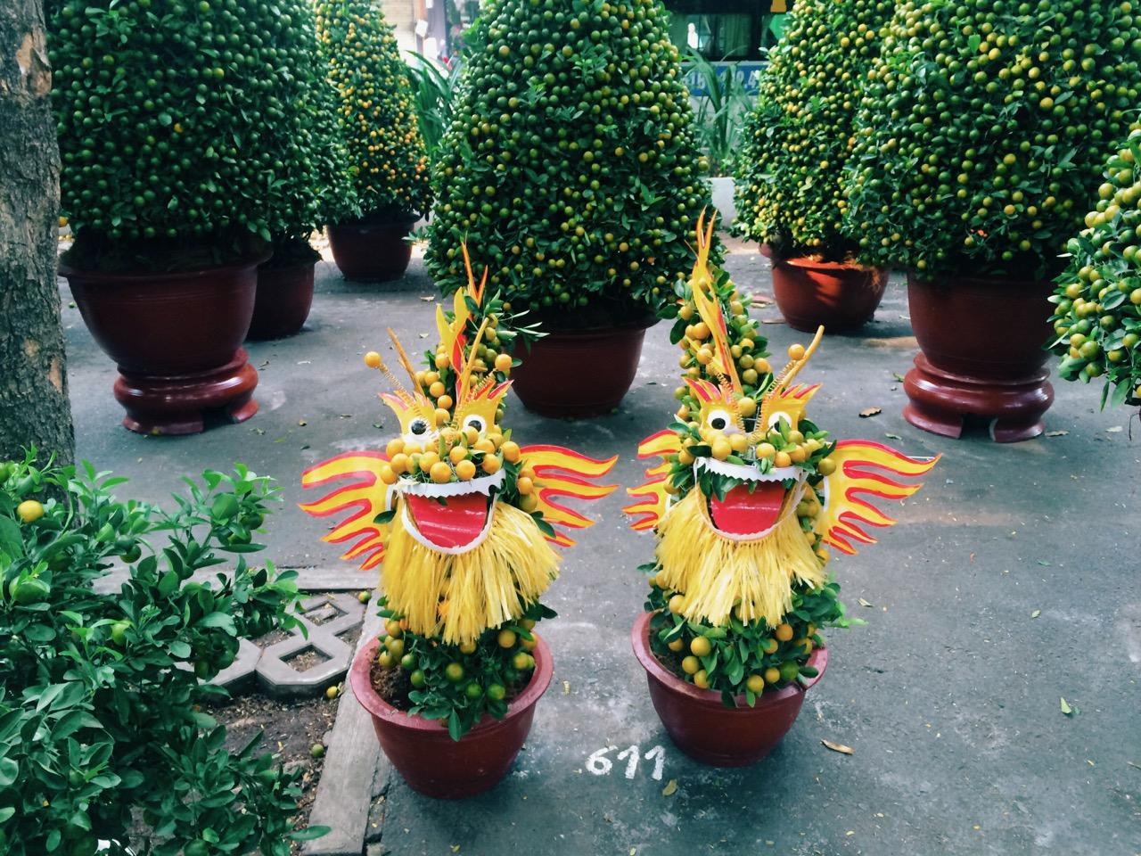 Вьетнамский Новый год: Украшенные деревья кумквата